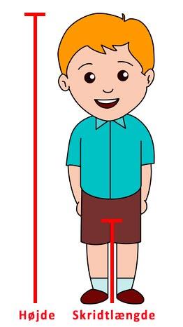 Illustration der viser højde og skridtlængde på et barn
